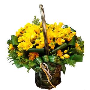 후리지아꽃바구니(계절상품)