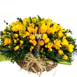 봄내음 후리지아(계절상품)